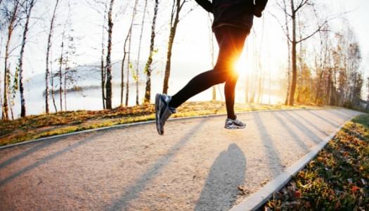 15 koraka do zdravog života