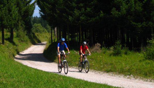 Potičite radnike da biciklom ili pješice dolaze na posao!