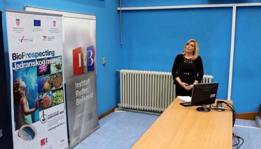 Na IRB-u predstavljen 37 milijuna kuna vrijedan projekt