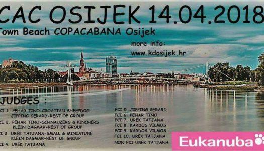 Izložba pasa u Osijeku
