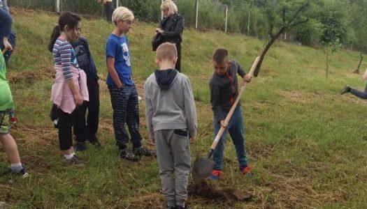 Djeca obnovila voćnjak iz kojeg će opskrbljivati školsku kuhinju