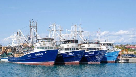 Kako su hrvatski ribari upecali europske milijune