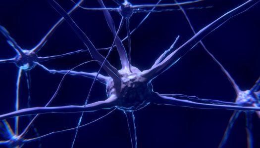 Hrvat na čelu tima koji je povezao položaj tijela s neurološkim promjenama