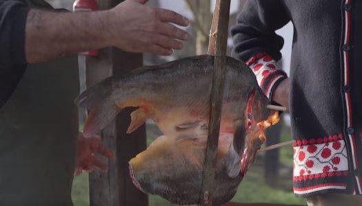 Divna priča o tradicijskom ribolovu i pripremi klasika u Baranji!