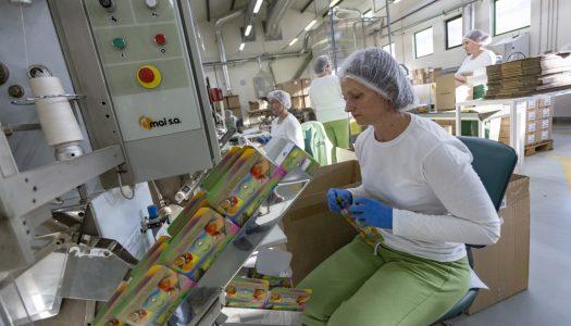 U Hrvatskoj se gradi jedna od najvećih tvornica čajeva u Europi: Proizvest će 400 milijuna vrećica godišnje